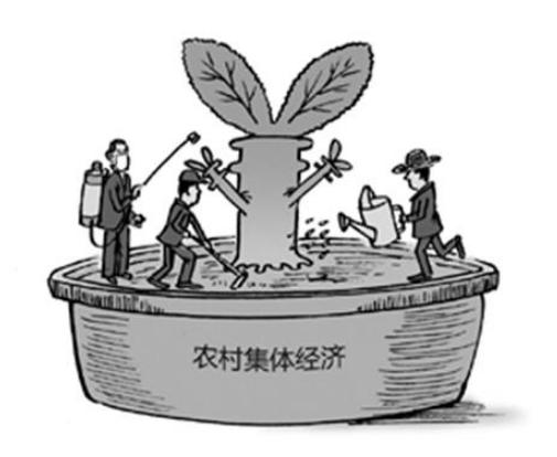 河池市政协副主席陆克率队调研村级集体经济