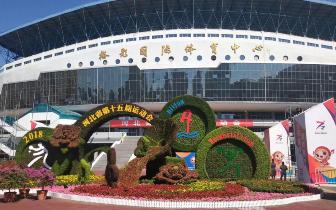 探营河北省第十五届运动会开幕式排练现场