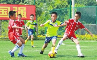 中国足球民间争霸赛(海南赛区)结束 琼中斩获双冠军
