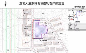 龙岩大道东侧地块控制性详细规划公示