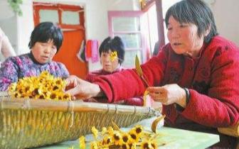 人社部印发方案:促进百万贫困劳动力就业