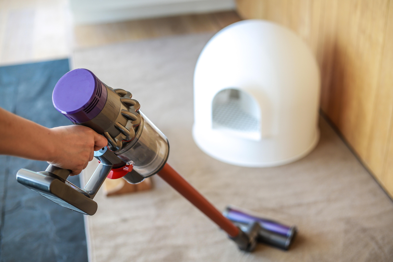 戴森无绳吸尘器体验:如何解决家居灰尘问题