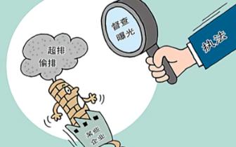 """省级环保""""三合一""""督察公开曝光5起整改典型案例"""