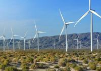 科学家:这个方案不仅能发电 还会绿化撒哈拉沙