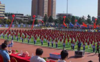 健身气功展演赛(河南会场)开幕式在镇平举行