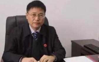 从政25年曾做过贺州市副市长的陈立华50岁辞官从商