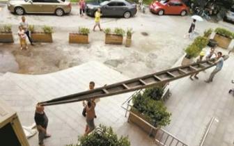 燕尾舟 清远村民赠百岁燕尾舟 目前在清远博物馆陈列展出