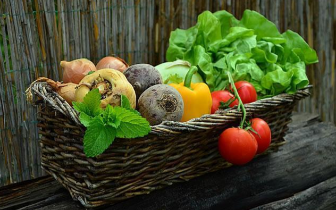 天然食品 - 水果维生素C含量