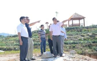 巴马:蓝海洲深入乡镇调研指导脱贫攻坚工作