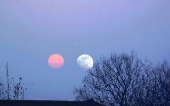 """月球不是普通""""卫星"""" 为何科学家对它情有独钟"""