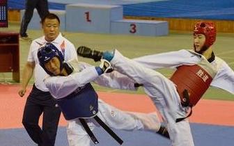 省运动会跆拳道比赛结束 唐山选手获5金4银8铜