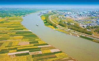 千里淮河岸线将全面开展岸线整治