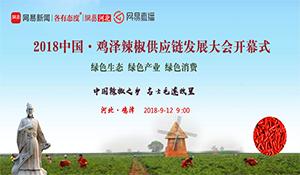 2018中国·鸡泽辣椒供应链发展大会开幕式