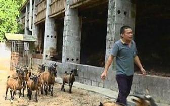 强化措施 发挥优势  大化水产畜牧业持续稳步增长