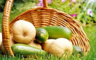 省农业科学院一行到产业园区 洽谈农产品加工项目