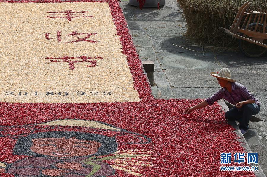 安徽黄山:古村晒秋乐丰收