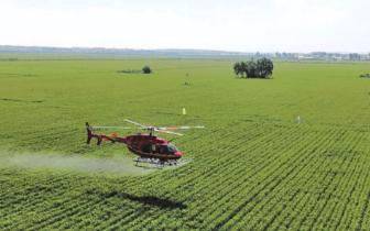 三门峡市特色农业向高质量发展迈进