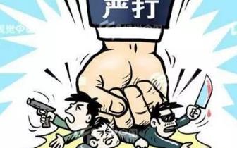 福州警方摧毁一黑社会性质组织 抓获犯罪嫌疑人14名