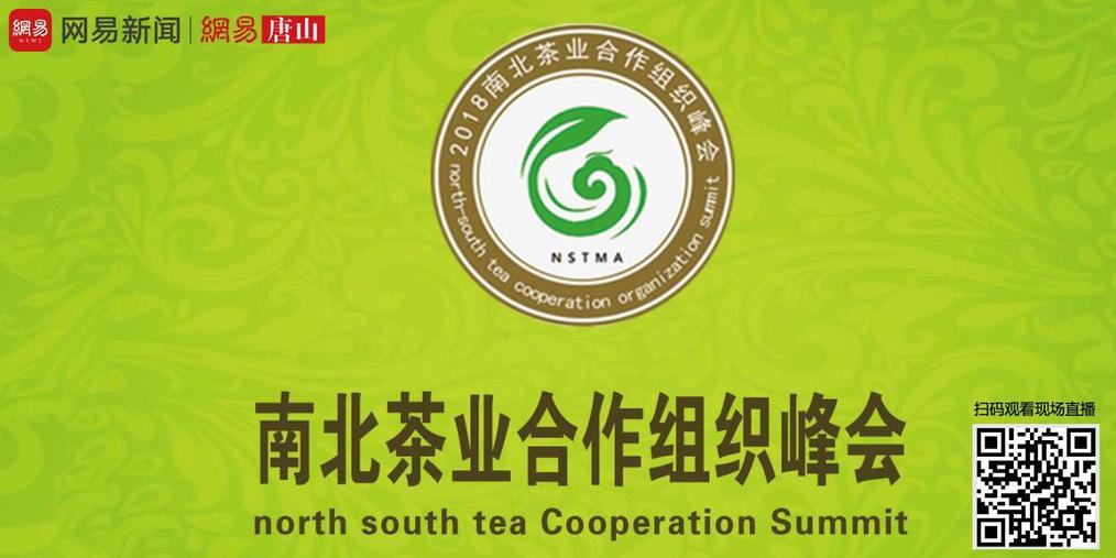 国内茶业界一线精英煮茶论道