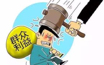 桂林推进扶贫领域腐败和作风问题专项治理