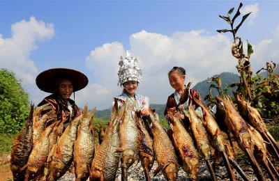 广西柳州:苗寨庆丰收
