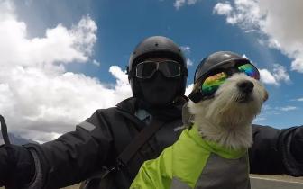 遛狗能走多远?德阳小伙带爱犬骑行19000多公里