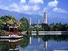大理州与浙江企业联合体就合作项目进行座谈