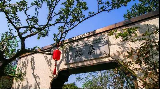 东海·玉河院子景观示范区大美绽放