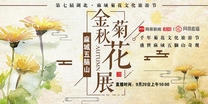 金秋菊花展 麻城五脑山(二)