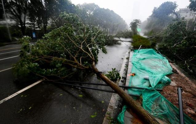 """台风威力超强 将摩天大楼吹成""""马蜂窝"""""""