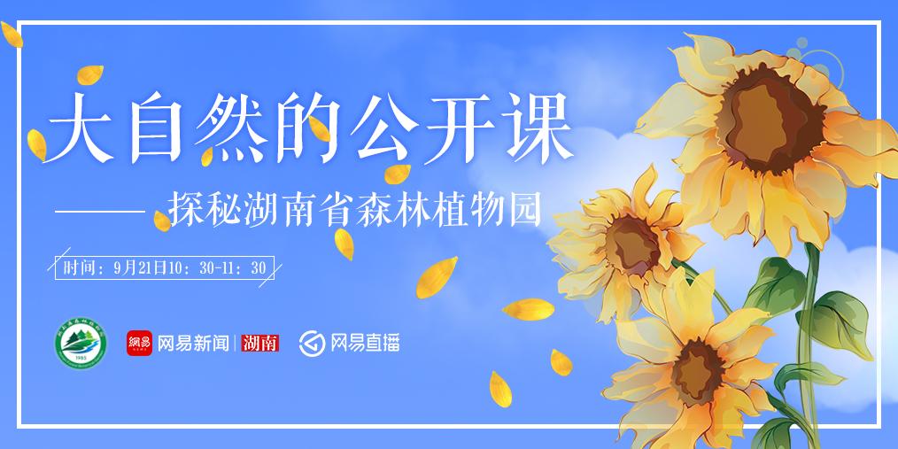 大自然的公开课:探秘湖南省森林植物园