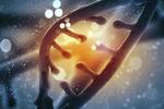 基因疗法清除帕金森致病蛋白指日可待