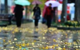 中秋小长假全省多地降温降雨 多处路段交通受影响
