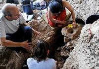 最古老啤酒1.3万年前诞生,比谷物种植还早几千