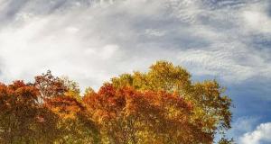美哉!中秋节黑龙山五彩林行摄游