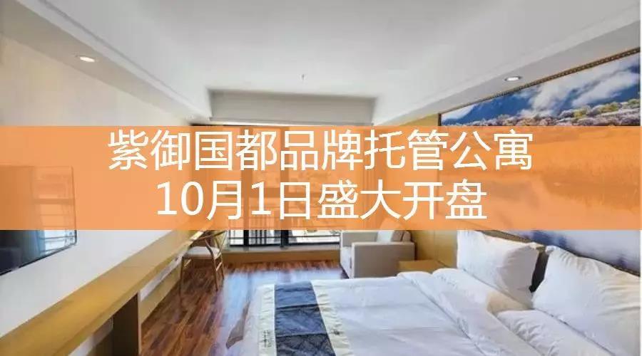 紫御国都精装公寓10月1日盛大开盘