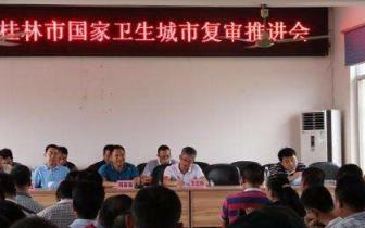 桂林市领导到城区检查国卫复审 强调全力以赴抓整改