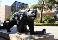 【名校之路】诞生了123枚奥运金牌的UCLA