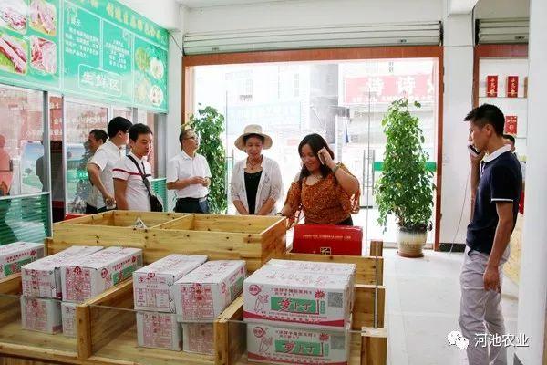 宜州区、天峨县积极推动信息进村入户工程