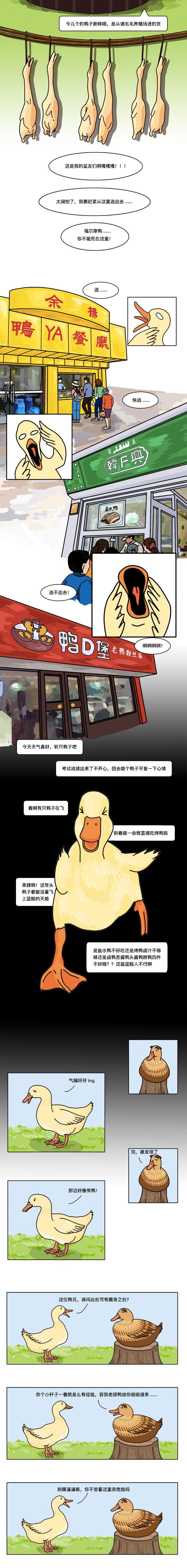 没有一只鸭子,可以活着游出南京