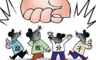 舒兰市通报三起群众身边腐败和作风问题典型案例