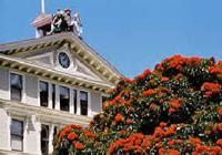 新西兰维多利亚大学将改名叫惠灵顿大学