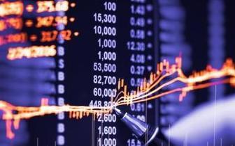 投服中心徐明:应尽快制定资本市场投资者保护条例