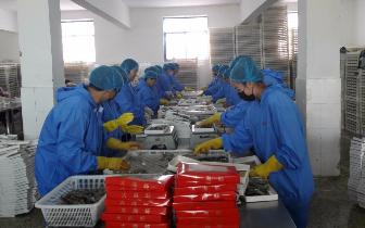 曹妃甸鹏盛水产精心打造区域特色旅游产品