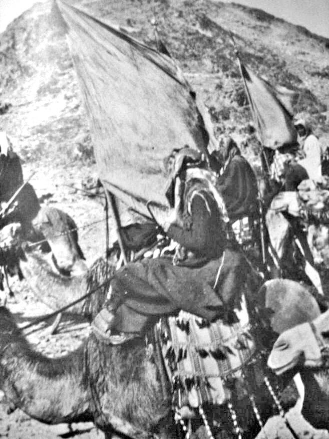 阿拉伯起义军中的骑兵部队