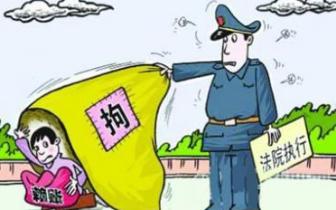 柘城法院妥善执结一批民生案件 有效保障群众利益