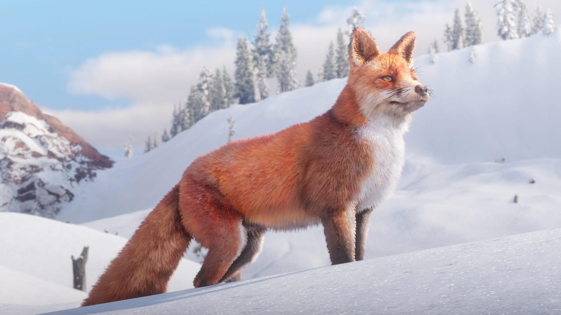《荒野大镖客:救赎2》野生动物新截图 惟妙惟肖栩栩如生