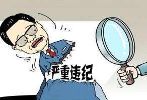 四川大凉山南红玛瑙有限责任公司党委书记、董事长杨跃发接受纪律