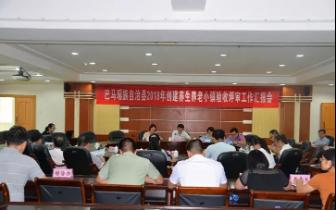 自治区验收组评审巴马镇创建广西养生养老小镇工作