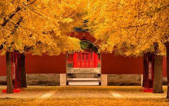 """""""北平的秋,是真正的秋……"""""""